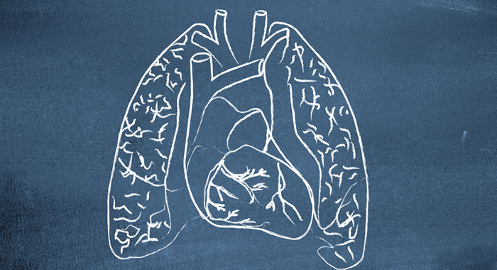 job options with respiratory care degree